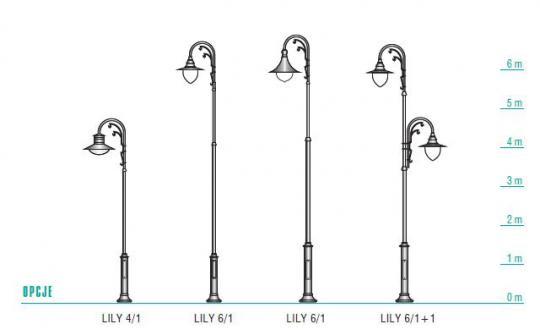 LILY wymiary